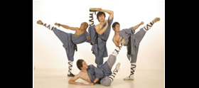 Shaolin Kung Fu Demonstratie Team